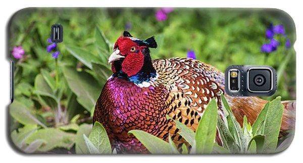 Pheasant Galaxy S5 Case by Martin Newman