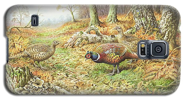 Pheasants With Blue Tits Galaxy S5 Case by Carl Donner