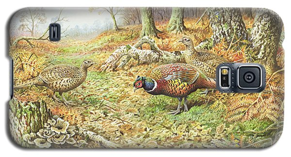 Pheasants With Blue Tits Galaxy S5 Case