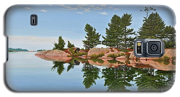 Galaxy S5 Case featuring the painting Philip Edward Island by Kenneth M Kirsch
