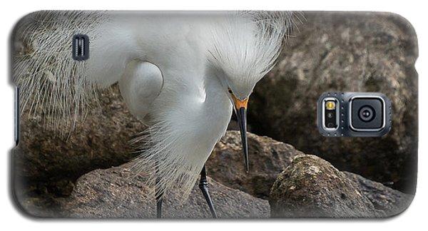 Galaxy S5 Case featuring the photograph Phills Diller by Allen Biedrzycki