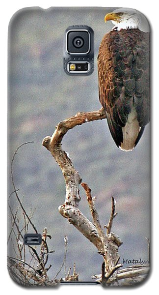 Phoenix Eagle Galaxy S5 Case