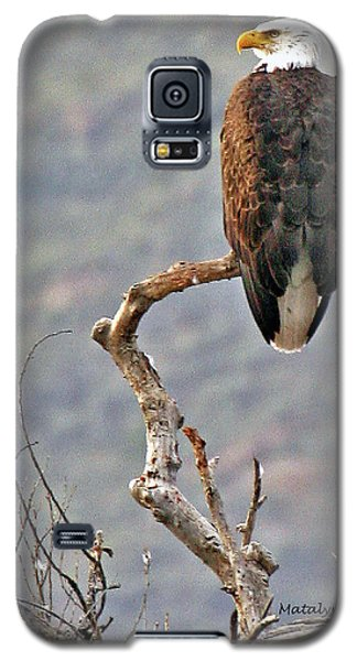 Phoenix Eagle Galaxy S5 Case