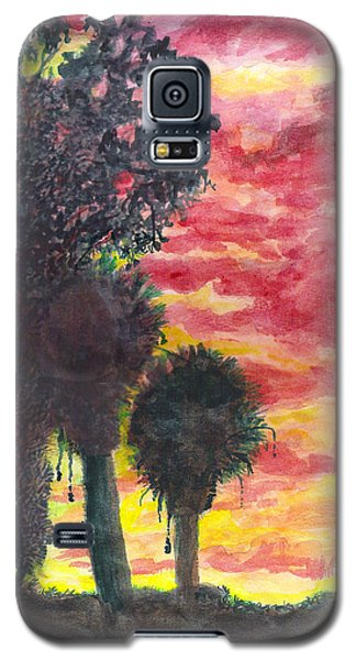 Phoenix Sunset Galaxy S5 Case