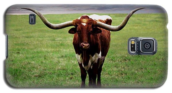Photo Texas Longhorn A010816 Galaxy S5 Case