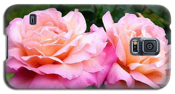 Galaxy S5 Case featuring the photograph Photogenic Peace Roses by Will Borden