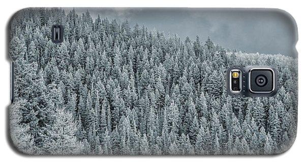 Winter Pines Galaxy S5 Case