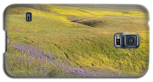 Galaxy S5 Case featuring the photograph Photographing Carrizo by Marc Crumpler