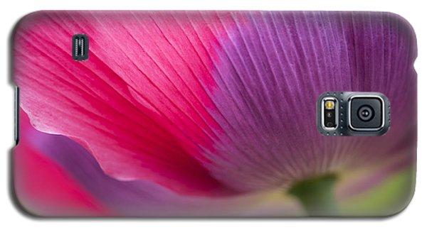 Poppy Close Up Galaxy S5 Case