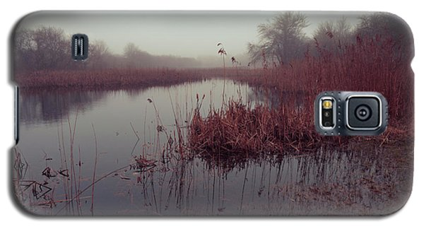 Galaxy S5 Case featuring the photograph Phragmites And Fog by Andrew Pacheco