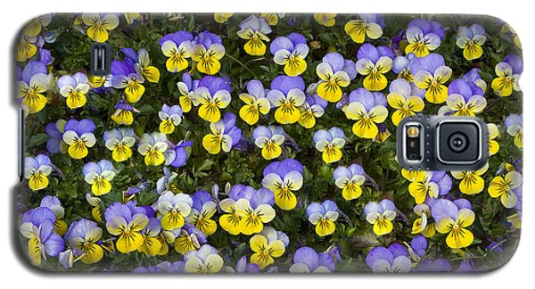 Pick Me-pansies Galaxy S5 Case