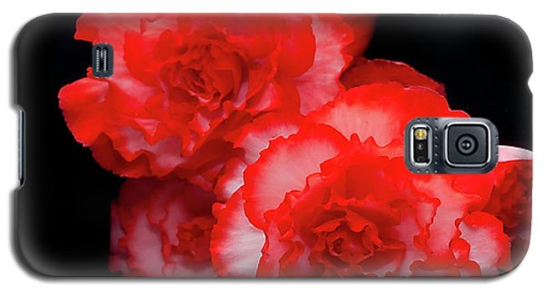 Picotee Begonia Galaxy S5 Case