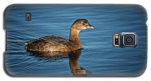Galaxy S5 Case featuring the photograph Pied Billed Grebe by Randy Hall