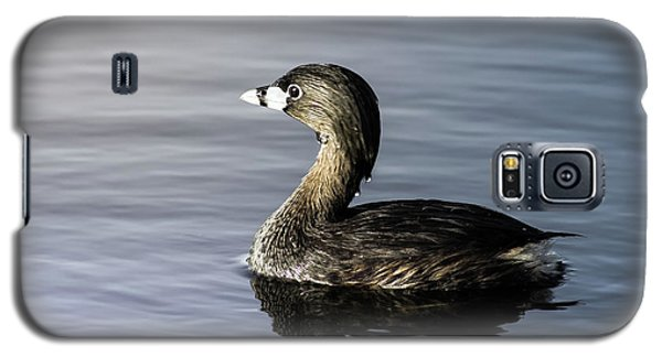 Galaxy S5 Case featuring the photograph Pied-billed Grebe by Robert Frederick