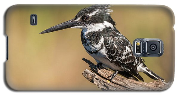 Pied Kingfisher Galaxy S5 Case