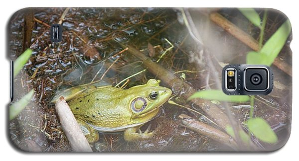 Galaxy S5 Case featuring the photograph Pig Frog by David Grant