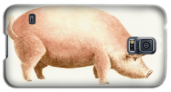 Pig Galaxy S5 Case by Michael Vigliotti