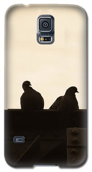 Dove Galaxy S5 Case - Pigeon And Steel by Bob Orsillo