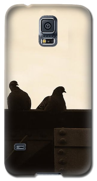 Pigeon And Steel Galaxy S5 Case by Bob Orsillo