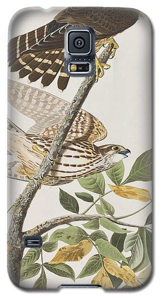Pigeon Hawk Galaxy S5 Case by John James Audubon