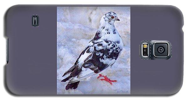 Pigeon On Ice  1 Galaxy S5 Case