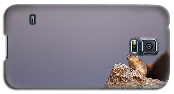 Pika Perched High Among Stormy Skies Galaxy S5 Case by Max Allen