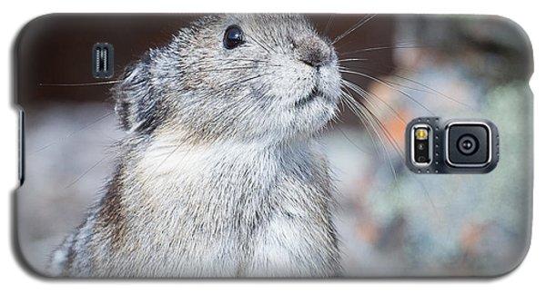 Pika Portrait Galaxy S5 Case