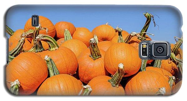 Pile Of Pumpkins Galaxy S5 Case