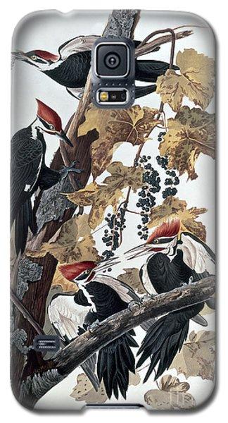 Audubon Galaxy S5 Case - Pileated Woodpeckers by John James Audubon