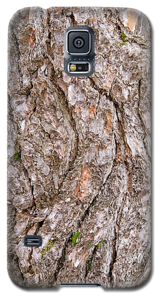 Galaxy S5 Case featuring the photograph Pine Bark Abstract by Christina Rollo