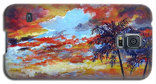 Galaxy S5 Case featuring the painting Pine Island Sunset by Lou Ann Bagnall