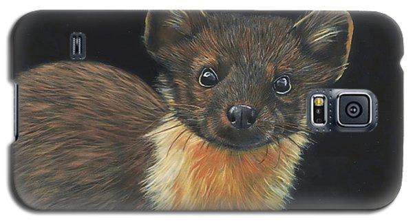 Pine Marten Galaxy S5 Case