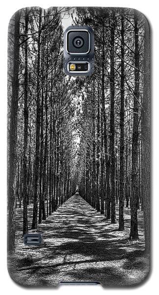 Pine Plantation 5655_6_7 Galaxy S5 Case