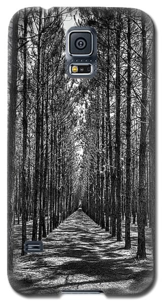 Pine Plantation 5655_6_7 Galaxy S5 Case