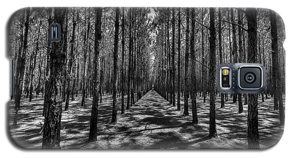 Pine Plantation Wide Galaxy S5 Case