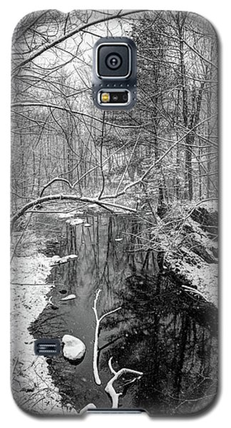 Pine Reflection On The Sheepscot Galaxy S5 Case
