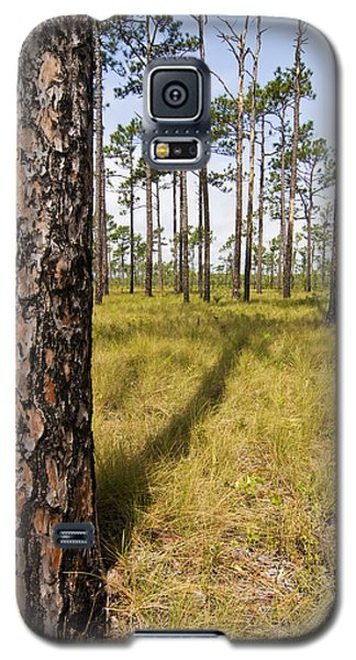 Pine Savanna II Galaxy S5 Case