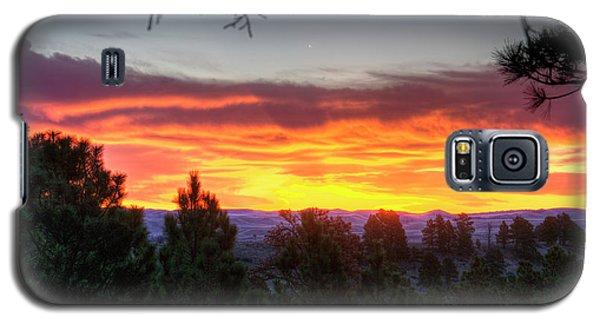 Pine Sunrise Galaxy S5 Case