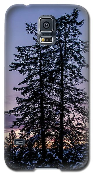 Pine Tree Silhouette    Galaxy S5 Case