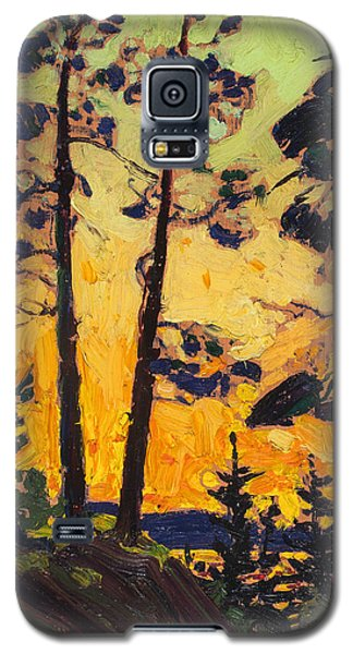 Pine Trees At Sunset Galaxy S5 Case