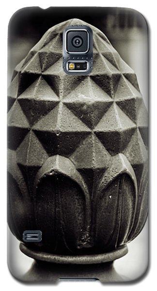 Pineapple, Oak Alley, Vacherie, Louisiana Galaxy S5 Case