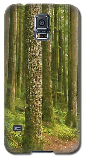 Pines Ferns And Moss Galaxy S5 Case