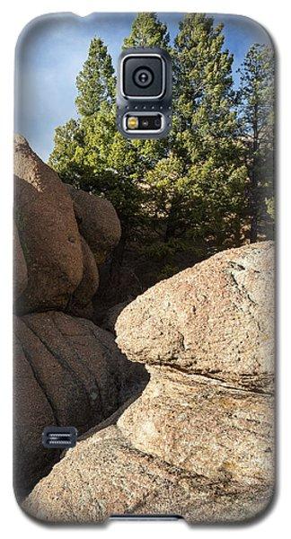 Pines In Granite Galaxy S5 Case