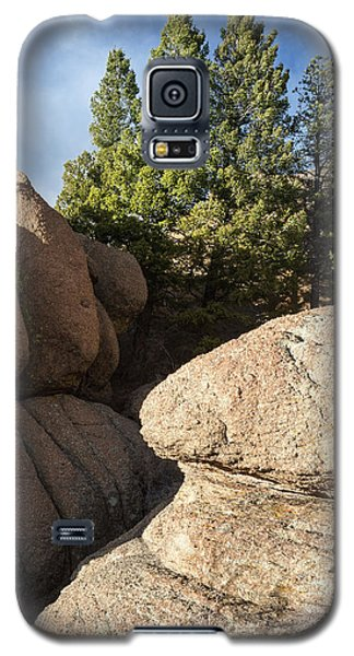 Pines In Granite Galaxy S5 Case