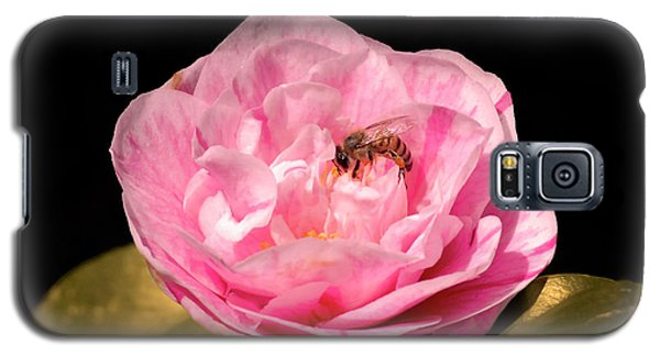 Pink And Bee Galaxy S5 Case