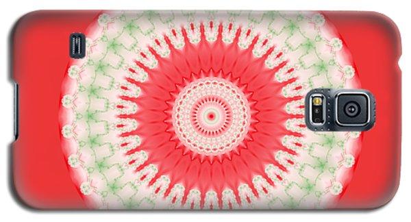 Pink And Green Mandala Fractal 001 Galaxy S5 Case