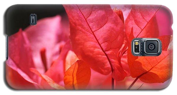 Bright Galaxy S5 Case - Pink And Orange Bougainvillea by Rona Black