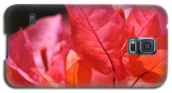 Orange Galaxy S5 Case - Pink And Orange Bougainvillea by Rona Black