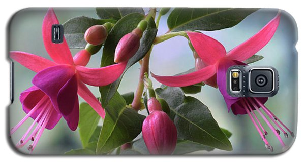 Galaxy S5 Case featuring the photograph Pink And Purple Fuchsia by Terence Davis