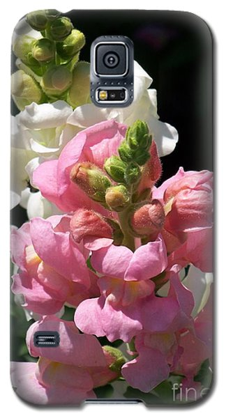 Galaxy S5 Case featuring the photograph Sweet Peas by Eunice Miller